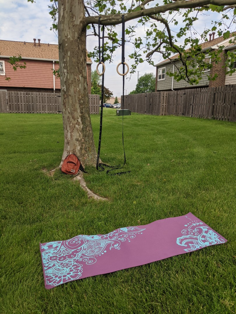 Gymnastic rings hanging from branch of sycamore tree, with a yoga mat in the foreground.